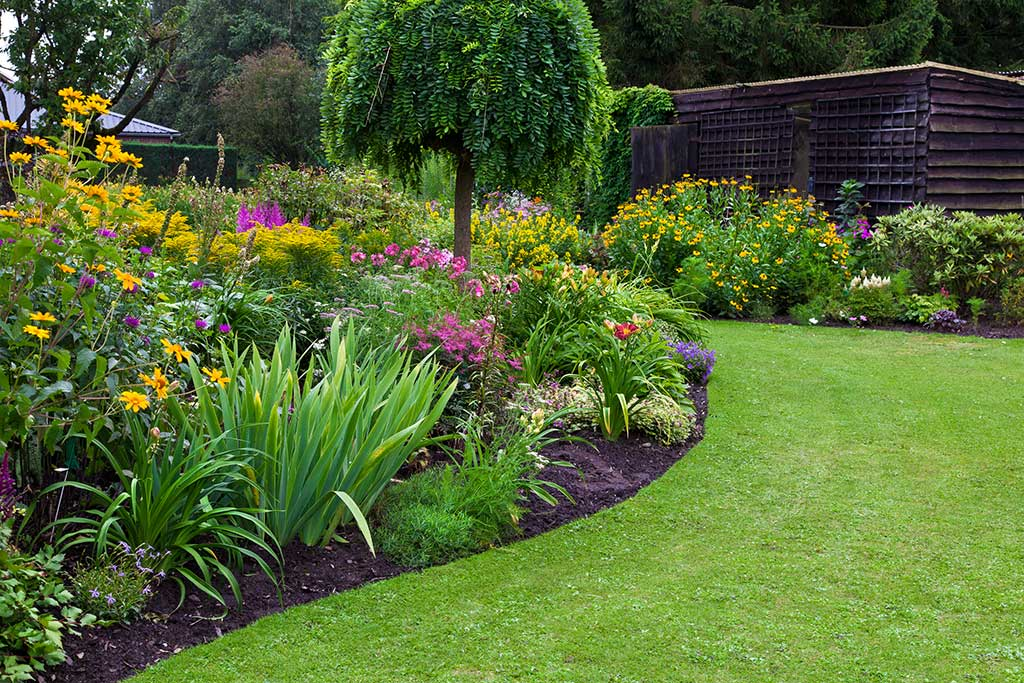Mantenimiento de jardines zona sur costa rica - Decoracion de jardines con plantas ...